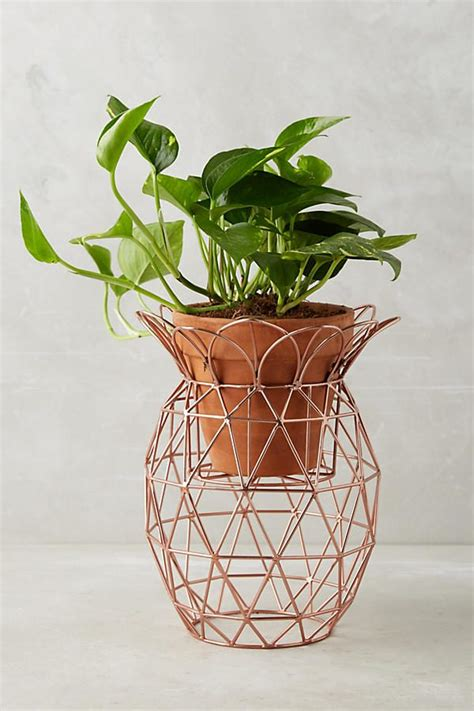 unique indoor plants 42 unique decorative plant stands for indoor outdoor use