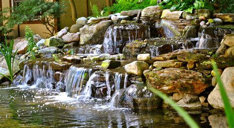 Indoor Water Garden Kits by Backyard Koi Ponds Water Garden Installation In