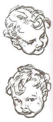 c 243 mo aprender a dibujar animales paso a paso im 225 genes videos aprender a dibujar caricaturas basico c 243 mo aprender a