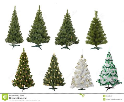 Apple Christmas Tree Ornaments - fur trees royalty free stock images image 11067129