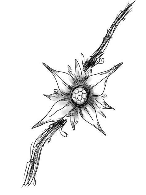 edelweiss tattoo design edelweiss design 1 by davwin on deviantart