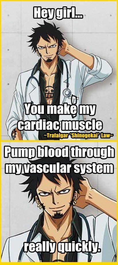Memes One Piece - 69 best meme images on pinterest trafalgar law one