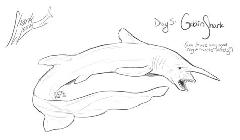 goblin shark coloring page ejs creations august 2012