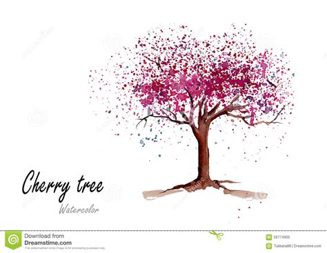 Cherry Blossom Wall Mural cherry tree hand drawn watercolor painting on white
