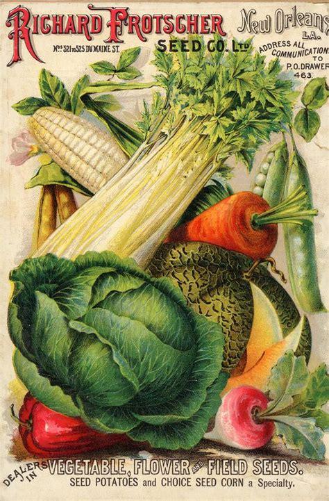 Vegetable Garden Catalogs My Paisley World Appreciating Vintage Vegetable Seed Catalogs
