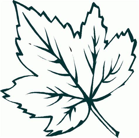 imagenes de hojas otoñales dibujo de una hoja de oto 241 o para imprimir y colorear