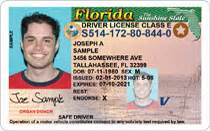Background Check Using Drivers License Number Driver S License Number Security Starpoint Driver