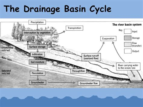 drainage basin system diagram water cycle diagram to label rock cycle diagram to label