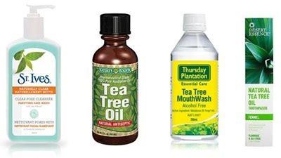 Minyak Pohon Teh 20 jenis obat alami menghilangkan jerawat secara alami