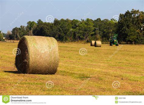 farm royalty free stock image image 30221386