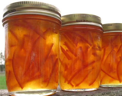 Seville Orange Marmalade Recipe Dishmaps