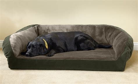 large memory foam dog bed memory foam dog bed extra large bed home design ideas