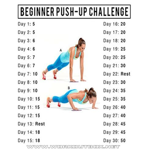 17 best ideas about 30 day pushup challenge on