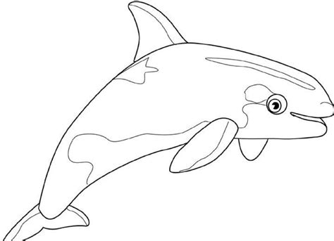 cartoon humpback whale az coloring pages