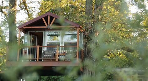 treehouse living adventure journal treehouse living