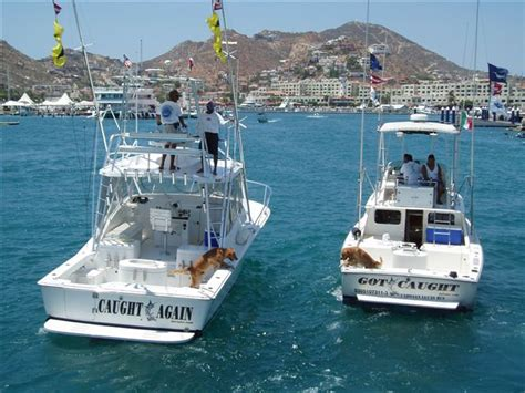 mexican fishing boat accident fishing spots across the border mexican insurance store