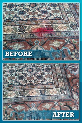 Area Rug Cleaning Chicago by Area Rug Cleaning Chicago Suburbs Roselawnlutheran
