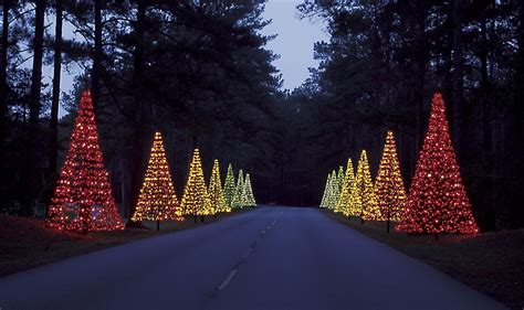 callaway gardens fantasy in lights celebrates its 20th