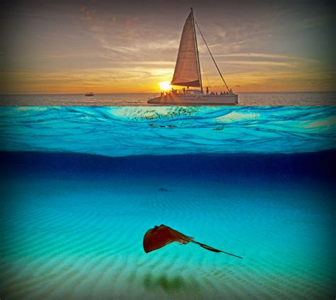 Late Sunset Sail Boat Sunset Sail Sports Introduces Stingrays And Sunset Excursion