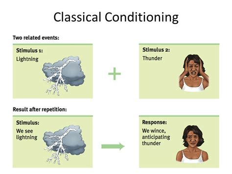 exle of classical conditioning classical conditioning www pixshark images