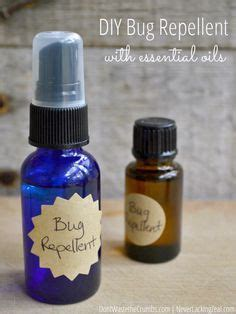 scents that repel bed bugs 1000 ideas about gnat repellant on pinterest gnat traps