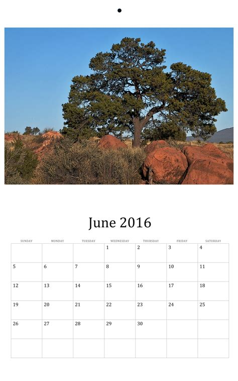 8 Great Wall Calendars by June 2016 Wall Calendar Free Stock Photo Domain