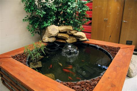 indoor fish pond the gallery for gt indoor koi pond kit