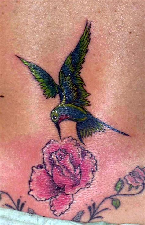 hummingbird and rose tattoo design gallery by singleton