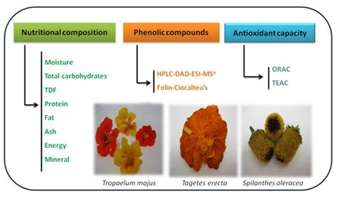 j fruit sci ijms special issue bioactive phytochemicals and
