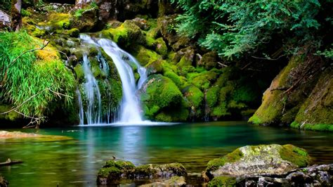 pc themes nature free download 3d hd nature backgrounds free download desktop wallpapers