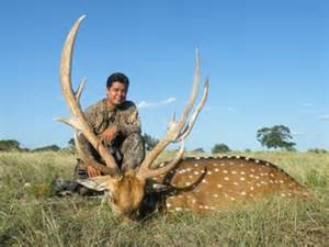 Pat vivas world record axis buck hunt photo texas hunt lodge