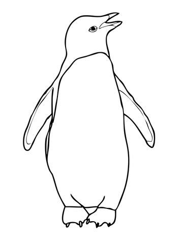 coloring page for penguin adelie penguin coloring page free printable coloring pages