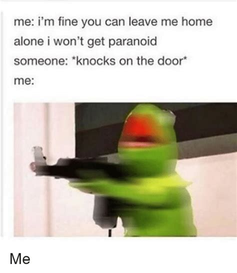 search when youre home alone memes on me me