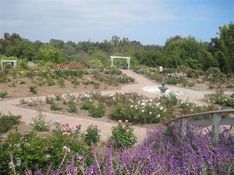 botanical garden palos verdes pin by susan o halloran on gardens