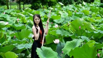The Lotus Pond Beautiful In The Lotus Pond Hd Desktop Wallpaper
