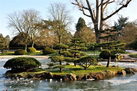 japanischer garten düsseldorf fototapete japanischer garten d 252 sseldorf japanese garden