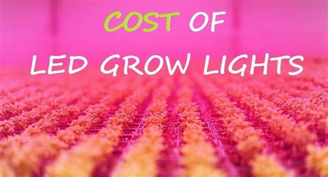 are led grow lights worth it best led grow lights for horticulture genesis scientific