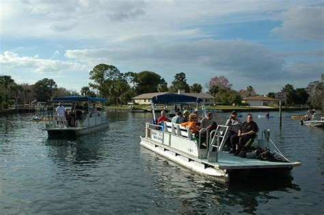 swim with manatees in crystal river florida manatee tours - Crystal River Boat Tours
