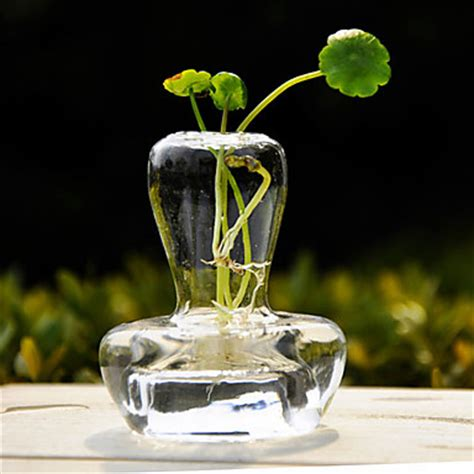Glass Vases For Centerpieces by Table Centerpieces Design Clear Glass Vase