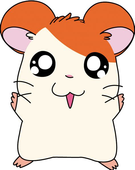imagenes de hamsters kawaii hamtaro character awesome anime and manga wiki