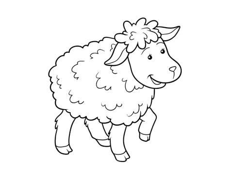 clipart de ovejas para colorear imagui oveja para colorear www pixshark com images galleries