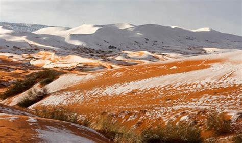 snow in sahara desert sahara desert covered in 15 inches of snow business