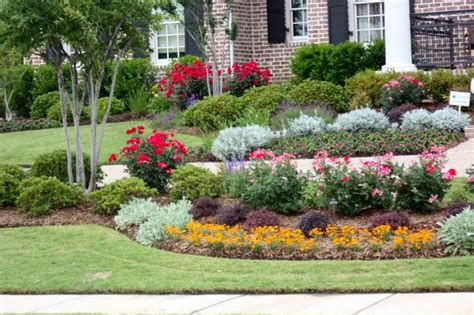Knockout Roses Landscape Ideas Landscape With Knock Out Roses Zinnias Dusty Miller