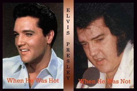 Like Like Bloated Is Now The Of Elvis by Polyniak Pictures News Information From The Web