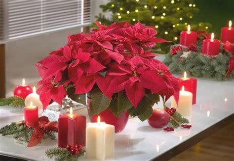 Weihnachtsfloristik Selber Machen 2748 weihnachtsfloristik selber machen adventsfloristik
