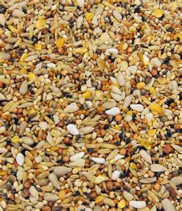 colonels wild bird food original mixes