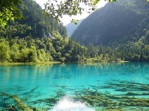 beautiful nature images slings and arrows nature objectively aids healing article