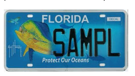 Florida Dmv Vanity Plates by Florida Dmv Locations Florida Get Free Image About
