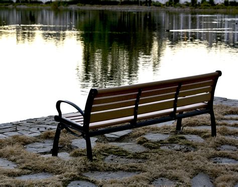 bench lake bench on the lake free stock photo public domain pictures
