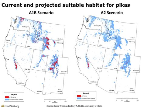 climate change could cause fish to shrink in size study fish and wildlife service archives ecowest